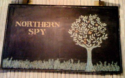 Northern spy banner