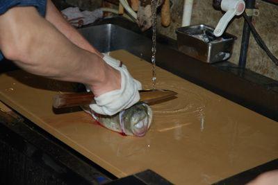 Fugu - first cut
