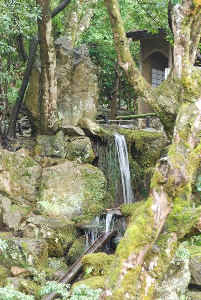 Outside waterfall teahouse