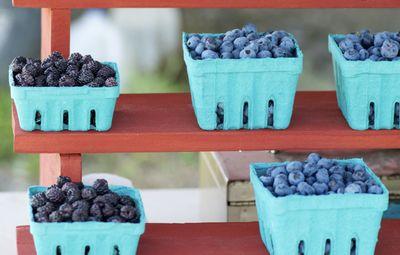 Black rasp and blueberries