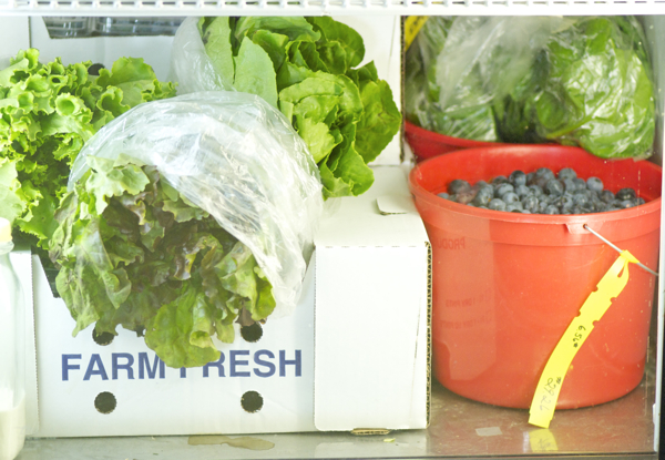 Greens and berries in refrigerator