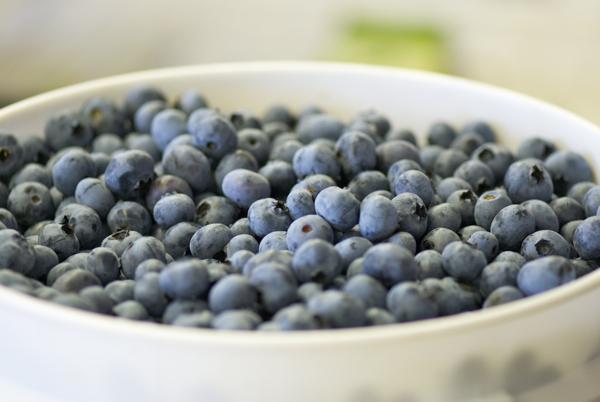 Gardenworks blueberries