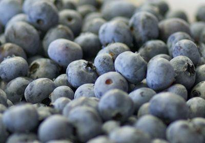 Gardenworks berries close