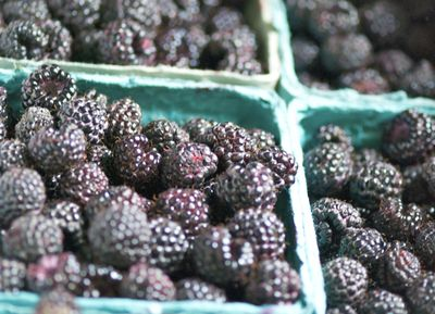 Black raspberries in containers