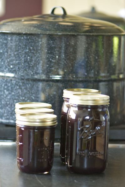 Blueberry jam canned