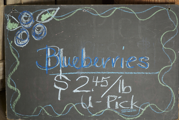 Blueberries sign