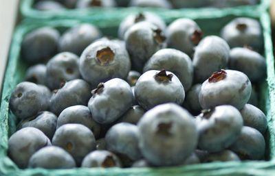 Chandler berries