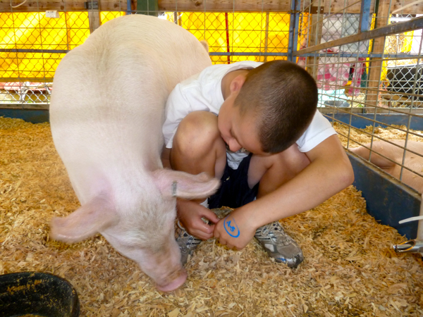 Kid with pig