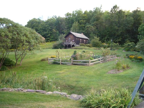 Garden in la backrgound